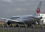 だだちゃ豆さんが、羽田空港で撮影した日本航空 787-8 Dreamlinerの航空フォト(写真)