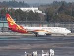 FT51ANさんが、成田国際空港で撮影した海南航空 737-808の航空フォト(写真)