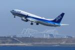 kando-yamaさんが、羽田空港で撮影した全日空 737-881の航空フォト(写真)