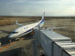 737dolphinさんが、徳島空港で撮影した全日空 737-781の航空フォト(飛行機 写真・画像)