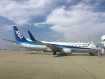 737dolphinさんが、徳島空港で撮影した全日空 737-881の航空フォト(写真)