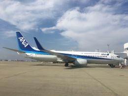737dolphinさんが、徳島空港で撮影した全日空 737-881の航空フォト(飛行機 写真・画像)