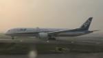 westtowerさんが、クアラルンプール国際空港で撮影した全日空 787-9の航空フォト(写真)