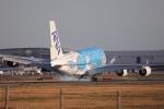 A350XWB-HNDさんが、成田国際空港で撮影した全日空 A380-841の航空フォト(写真)