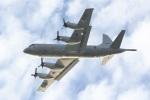 のりとまさんが、下総航空基地で撮影した海上自衛隊 P-3Cの航空フォト(写真)