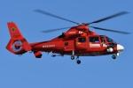 ブルーさんさんが、東京ヘリポートで撮影した東京消防庁航空隊 AS365N3 Dauphin 2の航空フォト(飛行機 写真・画像)