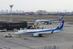わいどあさんが、伊丹空港で撮影した全日空 737-881の航空フォト(写真)