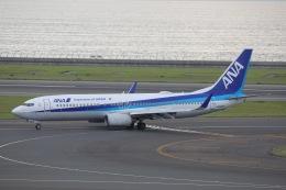 OS52さんが、中部国際空港で撮影した全日空 737-881の航空フォト(飛行機 写真・画像)