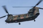 Kenny600mmさんが、明野駐屯地で撮影した陸上自衛隊 CH-47Jの航空フォト(写真)