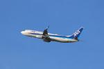 navipro787さんが、宮崎空港で撮影した全日空 737-8ALの航空フォト(写真)