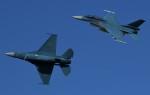青い翼に鎧武者マークの!さんが、岐阜基地で撮影した航空自衛隊 F-2Bの航空フォト(飛行機 写真・画像)