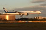 sepia2016さんが、成田国際空港で撮影した全日空 777-381/ERの航空フォト(写真)