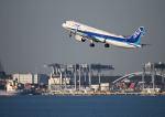 だだちゃ豆さんが、羽田空港で撮影した全日空 A321-272Nの航空フォト(写真)
