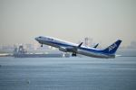だだちゃ豆さんが、羽田空港で撮影した全日空 737-881の航空フォト(写真)