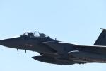 パラノイアさんが、ネリス空軍基地で撮影したアメリカ空軍 F-15E Strike Eagleの航空フォト(写真)