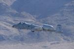 パラノイアさんが、ネリス空軍基地で撮影したアメリカ空軍 KC-10A Extender (DC-10-30CF)の航空フォト(写真)