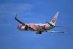 TAKAHIDEさんが、小松空港で撮影した日本トランスオーシャン航空 737-8Q3の航空フォト(写真)