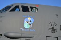 パラノイアさんが、ネリス空軍基地で撮影したアメリカ空軍 B-52の航空フォト(飛行機 写真・画像)