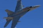 パラノイアさんが、ネリス空軍基地で撮影したアメリカ海軍 EA-18G Growlerの航空フォト(飛行機 写真・画像)