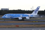 TAKA-Kさんが、成田国際空港で撮影した全日空 A380-841の航空フォト(写真)