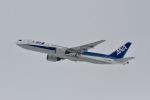 344さんが、新千歳空港で撮影した全日空 777-281の航空フォト(写真)