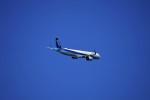 レドームさんが、羽田空港で撮影した全日空 A321-272Nの航空フォト(写真)