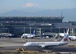 だだちゃ豆さんが、羽田空港で撮影した日本航空 767-346/ERの航空フォト(飛行機 写真・画像)
