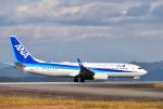 mojioさんが、静岡空港で撮影した全日空 737-8ALの航空フォト(飛行機 写真・画像)