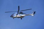 kumagorouさんが、仙台空港で撮影した東北エアサービス AS332L1 Super Pumaの航空フォト(飛行機 写真・画像)