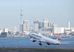 だだちゃ豆さんが、羽田空港で撮影した日本エアシステム 777-289の航空フォト(写真)