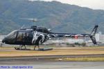 Chofu Spotter Ariaさんが、八尾空港で撮影したセコインターナショナル 505 Jet Ranger Xの航空フォト(飛行機 写真・画像)