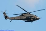 Chofu Spotter Ariaさんが、厚木飛行場で撮影したアメリカ陸軍 UH-60L Black Hawk (S-70A)の航空フォト(飛行機 写真・画像)