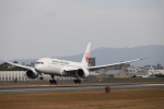 yasunori0624さんが、伊丹空港で撮影した日本航空 787-8 Dreamlinerの航空フォト(写真)