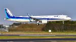 パンダさんが、成田国際空港で撮影した全日空 A321-272Nの航空フォト(写真)