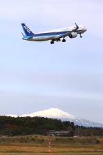 トリトンブルーSHIROさんが、庄内空港で撮影した全日空 A321-272Nの航空フォト(写真)