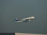 senchouさんが、羽田空港で撮影した全日空 A321-272Nの航空フォト(写真)