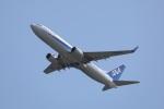 OS52さんが、関西国際空港で撮影した全日空 737-881の航空フォト(写真)