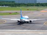 むらさめさんが、新千歳空港で撮影した全日空 737-8ALの航空フォト(写真)