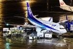 契丹さんが、中部国際空港で撮影した全日空 737-781の航空フォト(写真)