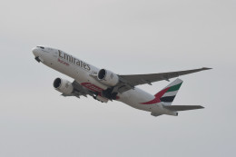 kuro2059さんが、香港国際空港で撮影したエミレーツ航空 777-F1Hの航空フォト(飛行機 写真・画像)