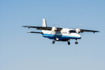 NCT310さんが、調布飛行場で撮影した新中央航空 228-212の航空フォト(写真)