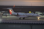 SFJ_capさんが、中部国際空港で撮影したトルコ政府 G-V-SP Gulfstream G550の航空フォト(飛行機 写真・画像)