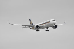 beimax55さんが、羽田空港で撮影したシンガポール航空 A350-941の航空フォト(飛行機 写真・画像)