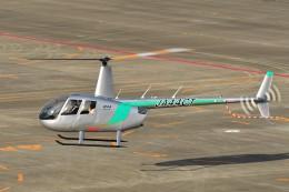 あきらっすさんが、名古屋飛行場で撮影したセコインターナショナル R44 Raven IIの航空フォト(写真)