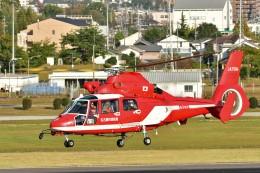 あきらっすさんが、名古屋飛行場で撮影した名古屋市消防航空隊 AS365N3 Dauphin 2の航空フォト(写真)
