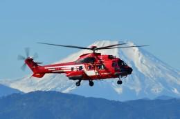 あきらっすさんが、立川飛行場で撮影した東京消防庁航空隊 AS332L1の航空フォト(写真)