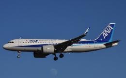 鉄バスさんが、成田国際空港で撮影した全日空 A320-271Nの航空フォト(飛行機 写真・画像)