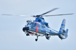 あきらっすさんが、大磯港で撮影した神奈川県警察 AS365N3 Dauphin 2の航空フォト(写真)