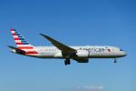 udaさんが、成田国際空港で撮影したアメリカン航空 787-8 Dreamlinerの航空フォト(飛行機 写真・画像)