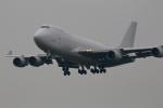 VFRさんが、成田国際空港で撮影したアトラス航空 747-4KZF/SCDの航空フォト(写真)